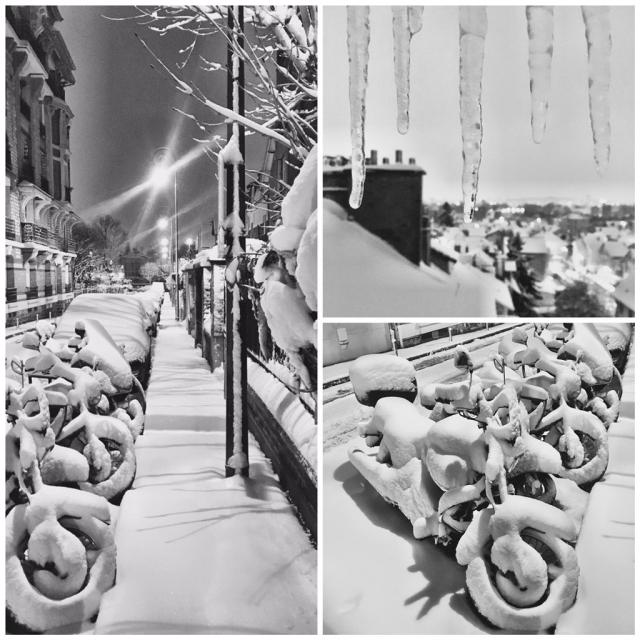 Parigi nel freezer: neve e caos