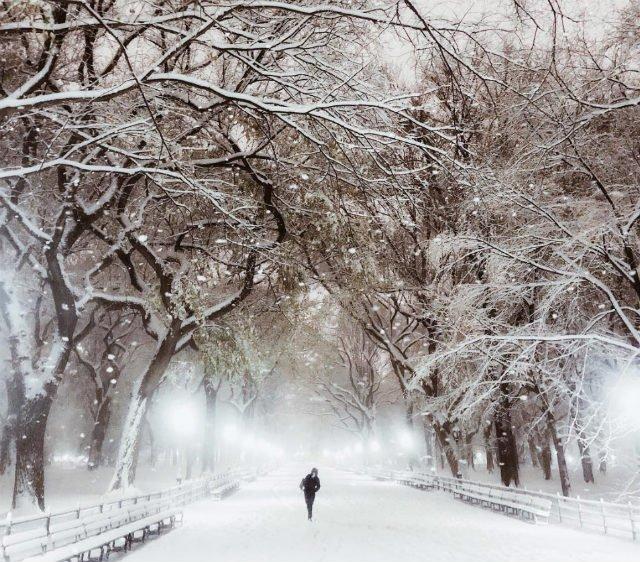 la neve fa la storia a new york mai una simile tempesta da 80 anni. Black Bedroom Furniture Sets. Home Design Ideas